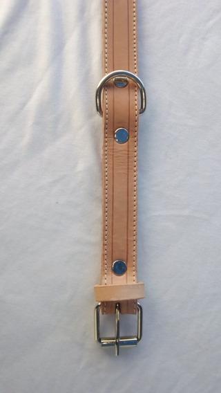 Collar De Cuero Para Perro Exelente Calidad 70 X 3 Cm