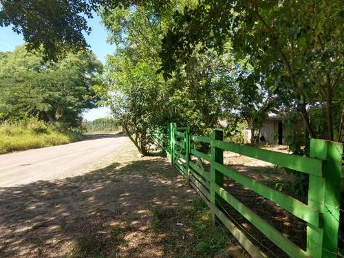 Chácara 10.000 M² - Maracanã - Glorinha - Rs - 2015 - 33422751