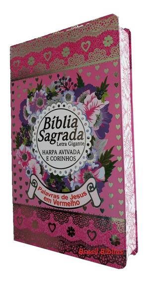 17 Bíblias Conforme Descrição