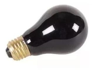 Foco Luz Negra 75w 10pz
