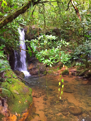 Sítio Fazenda Cachoeiras ( Entrada + Parcelas + Imoveis )