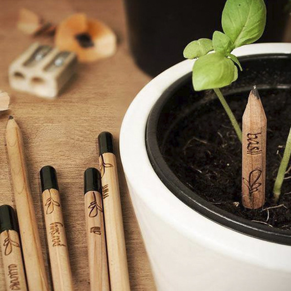 Lapiz Lapices Sprout Semilla 100 Ecologicos Caja 8pz Full