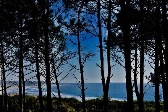 Venta Terreno Rocha Uruguay Manzana Entera Playa Grande