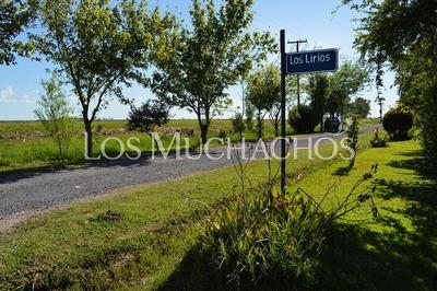 Terreno A La Venta En Barrio Abierto Los Muchachos - Piñero