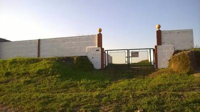 Terreno 795 Mt2 Rodeado De Muros.