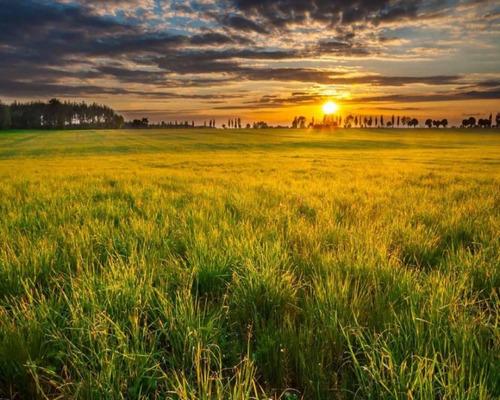Lançamento Loteamento Sol Nascente Lotes Partir 140m2 Entrada 10% E Saldo Em Ate 180x - 2941946011 - 34703091