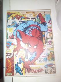 Quadro Homem Aranha Autografado Pelo Stan Lee.