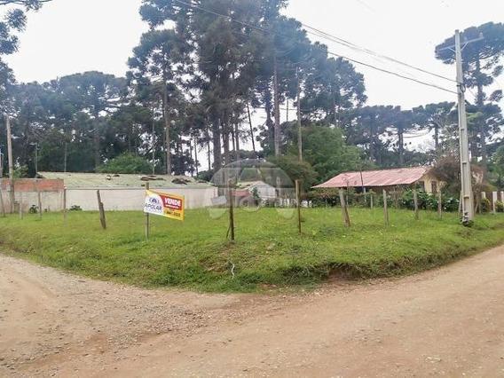Terreno - Comercial/residencial - 924043