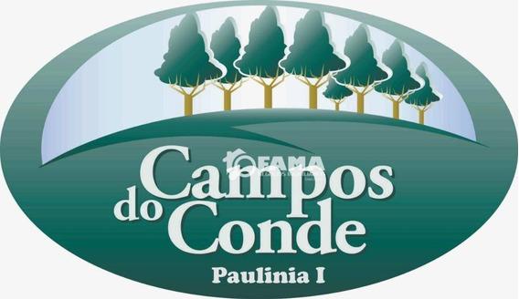 Terreno À Venda, 342 M² - Condomínio Campos Do Conde - Paulínia/sp - Te0550
