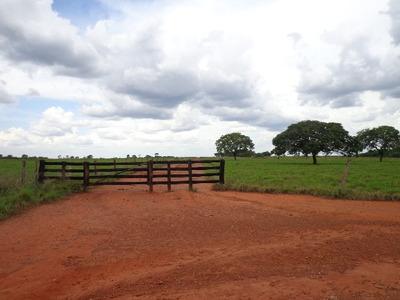 Fazenda Em Abreulândia - To, Dupla Aptidão - 445