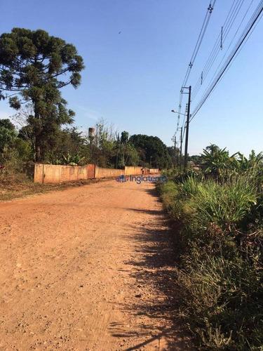 Imagem 1 de 6 de Terreno À Venda, 3000 M² Por R$ 325.000,00 - Indusville - Londrina/pr - Te0489