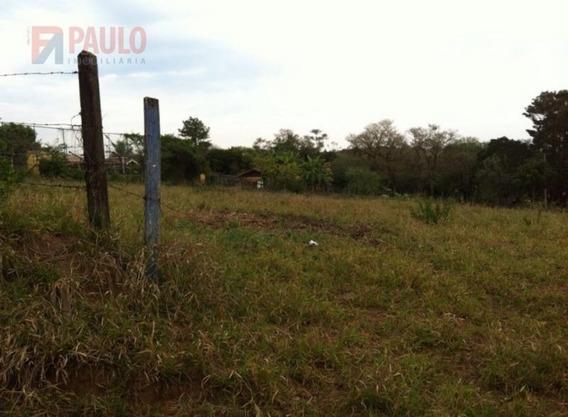 Chacara / Sitios / Fazenda - Sao Pedro - Ref: 3826 - V-3826