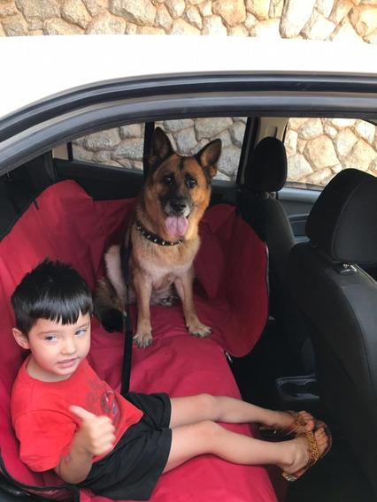Capa Cachorro, Proteção P/ Banco Do Carro Menor Preço