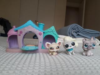 Pet Shop + Casa