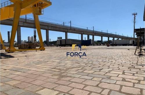 Área Para Alugar, 4650 M² - Cumbica - Guarulhos/sp - Ar0016