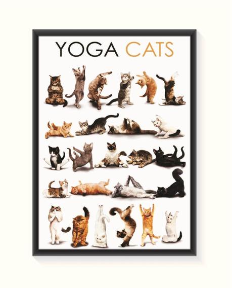 Pôster Yoga Cats Tamanho Médio. Frete Grátis Brasil