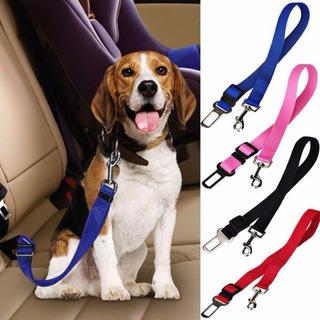 Cinturón De Seguridad Perros Y Gatos Para El Auto | Mascotas