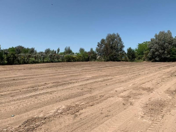 Reed Vende Excelente Lote 1 Hectarea.