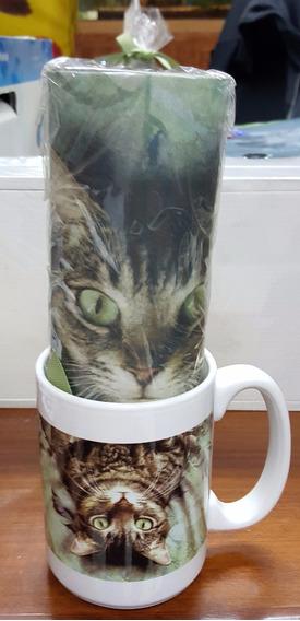 Mug Porcelana Gatos 2 Y Mouse Pad