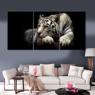 Cuadro Decorativo 3 Pzas 018 Tigre Blanco / Sin Marco