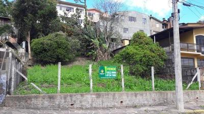 Terreno - Planalto - Ref: 202063 - V-202063