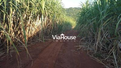 Fazenda À Venda, 3823600 M² Por R$ 11.000.000 - Área Rural - Ituverava/sp - Fa0002