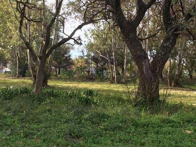 Terreno Frente A La Rambla De Juan Lacaze, Toda La Manzana