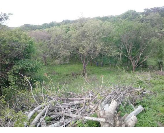 Se Vende Terreno En Los Santos 2 Has 5730m2