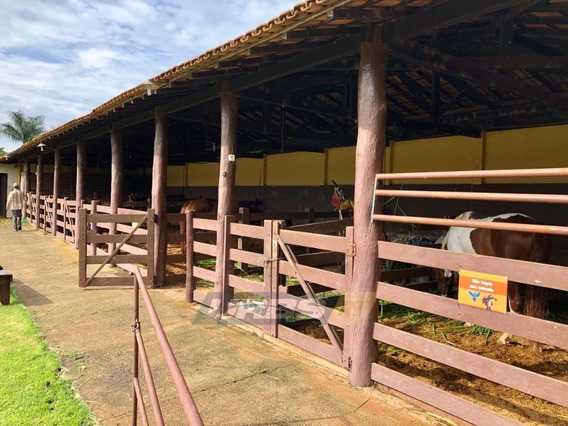 Comercial À Venda, Vila Pai Eterno, Trindade. - Ch0042