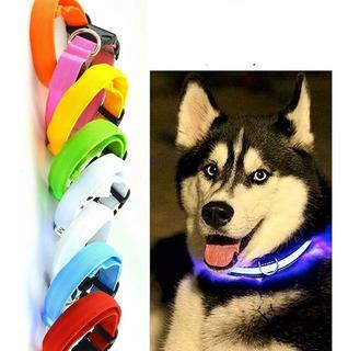 Collar Led Brillante Seguridad Paseo Nocturno Moda Perro