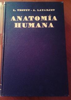 Libro De Anatomía Humana L. Testut A. Latarjet. Tomo Cuarto