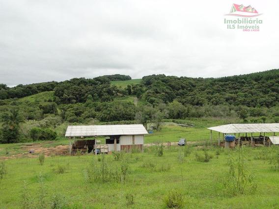 Fazenda Rural À Venda, Distrito De Mariental, Lapa - Fa0006. - Fa0006