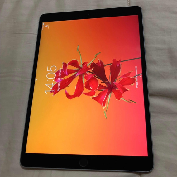 iPad Pro 10,5 - 256gb Wi-fi - Ultima Geração-cinza Espacial