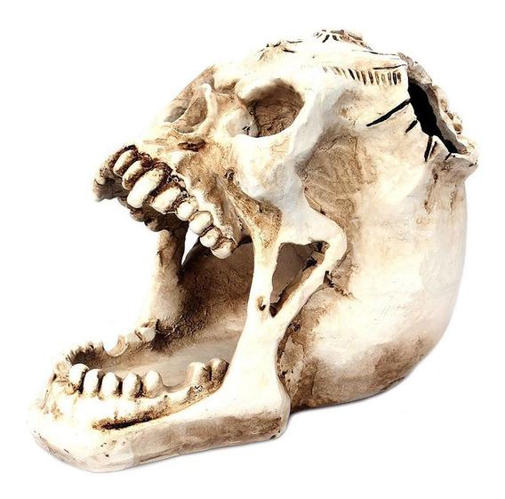 Joyería De Almacenamiento De Cabeza De Cráneo De Boca Abiert