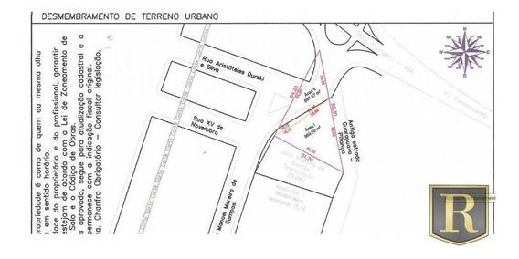 Terreno Para Venda Em Guarapuava, Distrito De Palmeirinha - 695927