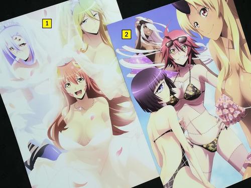 Posters A3 29x42cm Anime Monster Musume No Iru Nichijou #1