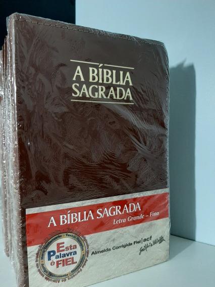 Kit Com 6 A Bíblias Sagrada Letra Grande Fina Capa Luxo