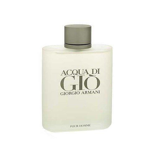 Perfume Acqua Di Giò Homme Edt Masculino 50ml Giorgio Armani