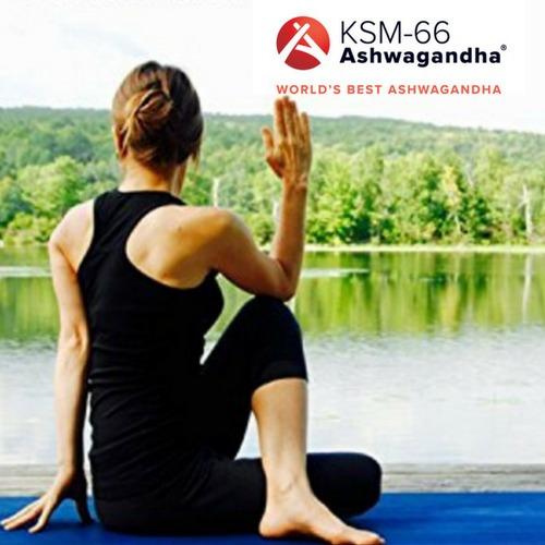 Ashwagandha Ksm 66® 500mg Ginseng Indiano 60 Caps Vegana