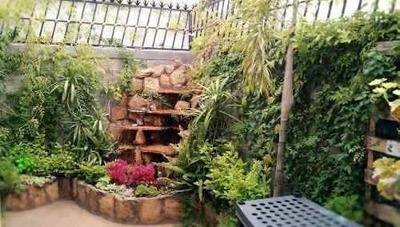 En Renta Casa En Terranova, 3 Recámaras, 2.5 Baños, Jardín, Cascada, Ubicadisima