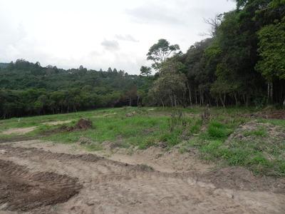 J Terreno 1000m2 Com Lago Para Pesca R$30000 Mil