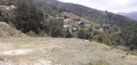 Lote De Terreno Sector Cambural - Conde 04242191182