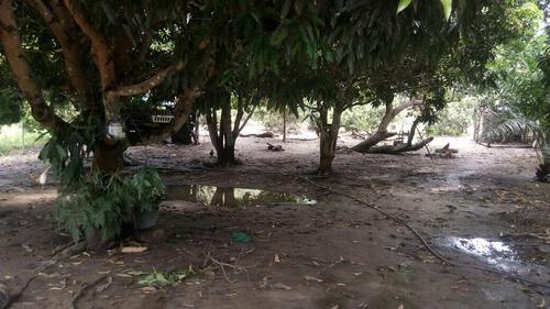 Sitio/chácara Na Chapada Diamantina Na Bahia Cidade Wagner