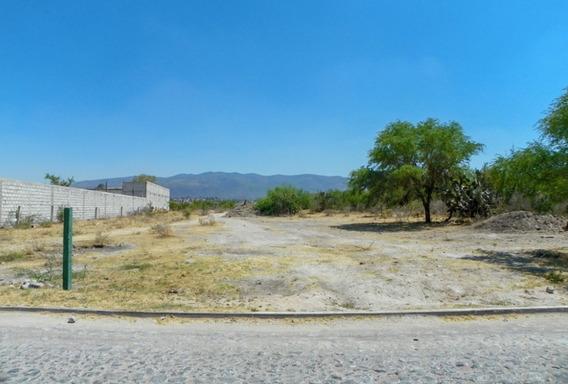 Terreno Casco