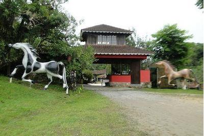 Fazenda À Venda, 246000 M² Por R$ 5.000.000 - Fazenda Velha - Tapiraí/sp - Fa0011