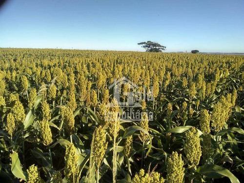 Imagem 1 de 8 de Fazenda À Venda, 262 Alqueires Por R$ 36.680.000 - Zona Rural - Assis/são Paulo - Fa0243