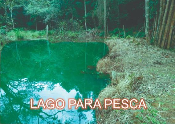 E.p Lindos Terrenos 1000 M2 Ibiuna Com Lago