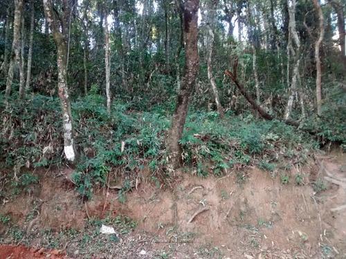 Imagem 1 de 5 de Terreno Jardim Paulista Em Atibaia - 650m² - Te0104-1