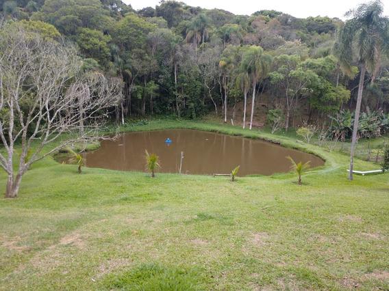 Chácara Ibiúna 7.000 M Sede, Piscina, Lago,pomar Muito Verde