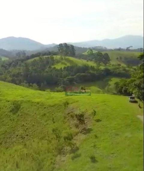 Terreno À Venda, 1200 M² Por R$ 110.000 - Rio Preto - Santo Antônio Do Pinhal/sp - Te0908